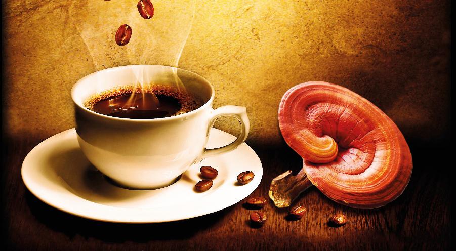 Organo nuova bevanda OG Black Coffee